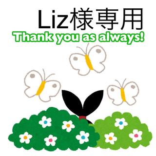 Liz様専用(菓子/デザート)