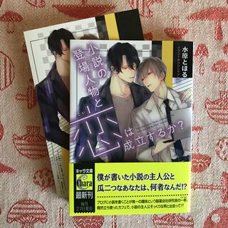 BL 小説 小説の登場人物と恋は成立するか? 水原とほる(ボーイズラブ(BL))