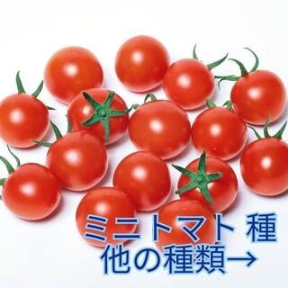 あゆ様専用(野菜)