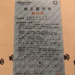 1枚 白洋舎 無料券 株主優待券(その他)