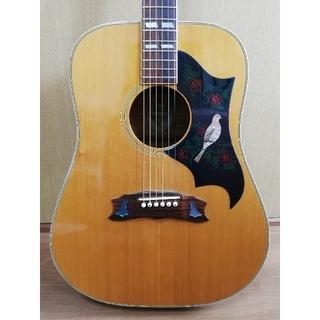 ギブソン(Gibson)のMILES2000 DOVE タイプ トップ単板 ジャパンヴィンテージ(アコースティックギター)
