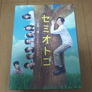ヘイセイジャンプ(Hey! Say! JUMP)のセミオトコ DVD-BOX(TVドラマ)