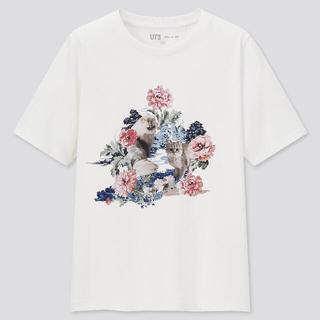 ユニクロ(UNIQLO)のユニクロ ポール&ジョーTシャツ♡(Tシャツ(半袖/袖なし))