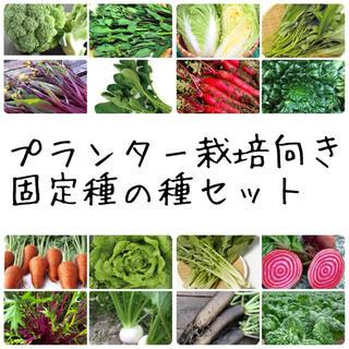 ★伝統野菜★プランター栽培向け固定種の種セット(野菜)