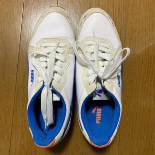 プーマ(PUMA)の運動靴 PUMA(その他)