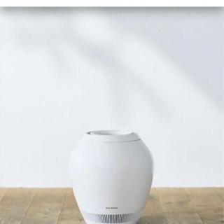 BALMUDA - バルミューダ加湿器 気化式 Rain Wi-Fiモデル