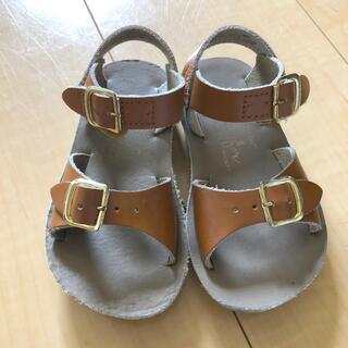 キャラメルベビー&チャイルド(Caramel baby&child )のsalt water sandals / サイズ6(サンダル)