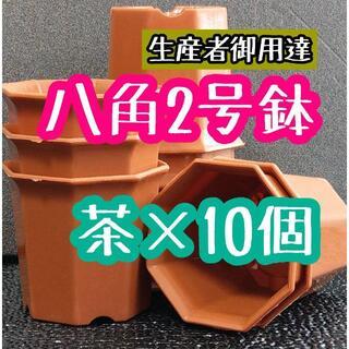 八角鉢 ◎10個◎ ブラウン 2号 2寸 プラ鉢 ミニ鉢 シャトル鉢(プランター)