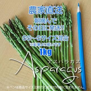 細アスパラ 1kg アスパラガス 採りたて野菜(野菜)