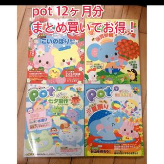 お値下げ!ポット pot 教育雑誌 1年分12冊(専門誌)