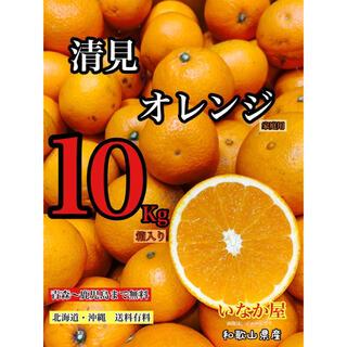 和歌山 清見オレンジ 早い者勝ち セール 特価価格残り1点(フルーツ)