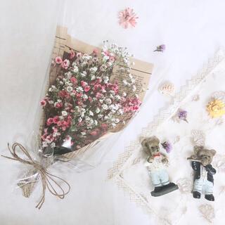 pink&white ミックスかすみ草のドライフラワー(ドライフラワー)