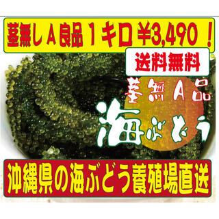 沖縄直送 海ぶどう 茎無しA良品 1キロ 送料無料!(野菜)