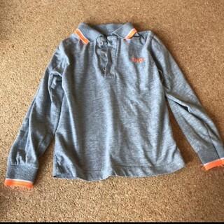 ドルチェアンドガッバーナ(DOLCE&GABBANA)の本日限定価格 ドルチェ&ガッバーナ ポロシャツ 90  100(Tシャツ/カットソー)