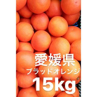 愛媛県 ブラッドオレンジ タロッコ 15kg(フルーツ)