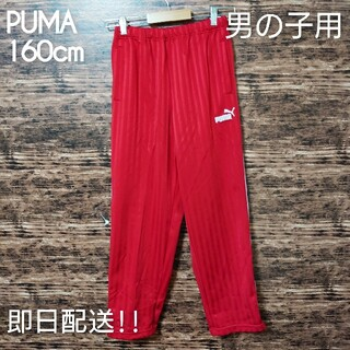 PUMA - プーマ ジャージパンツ 160cm 男の子用 レッド 日本製 お買い得品
