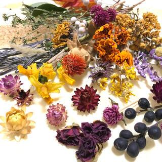 [お得パック]ドライフラワー 20種類 ハーバリウム 花材 素材 ナチュラル J(ドライフラワー)