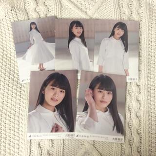 ノギザカフォーティーシックス(乃木坂46)の大園桃子 生写真(アイドルグッズ)