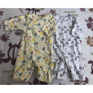 2枚組 新生児 ロンパースセット クマ&ゾウ(ロンパース)