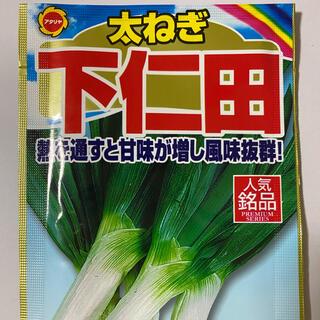 熱通すと甘みが増し風味抜群 ! 太ネギ 下仁田ネギの種 30個(野菜)