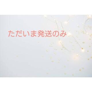 サベックス(Savex)の新品未開封☆Savex リップクリーム トロピカル 2個(リップケア/リップクリーム)