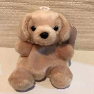アウロラ(AURORA)の新品 オーロラワールド お手玉マスコット ぬいぐるみ レトリバー 犬 1個(ぬいぐるみ)
