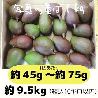[黄10-1]約9.5キロ グリーンマンゴー 青マンゴー 加工用 マンゴー(フルーツ)