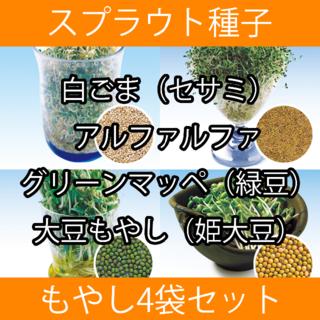もやし系スプラウト種子4袋セット(野菜)