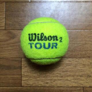 ウィルソン(wilson)のウィルソンテニスボール 1個 送料無料(ボール)