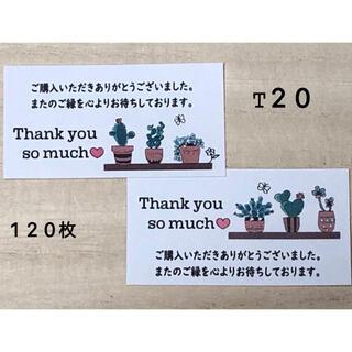 サンキューシール*T20 多肉植物 120枚(その他)