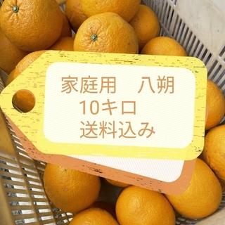 家庭用 八朔 10キロ(フルーツ)