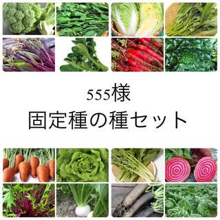 555様 ★伝統野菜★固定種の種セット(野菜)