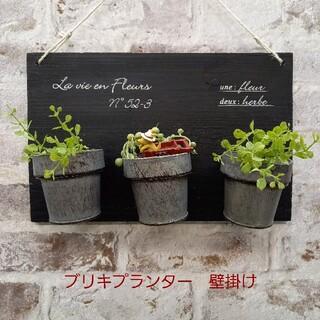 ブリキプランター 壁掛け 多肉植物(プランター)