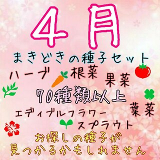 aru様専用(野菜)