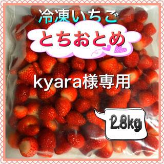 冷凍とちおとめ 3kg kyara様専用(フルーツ)