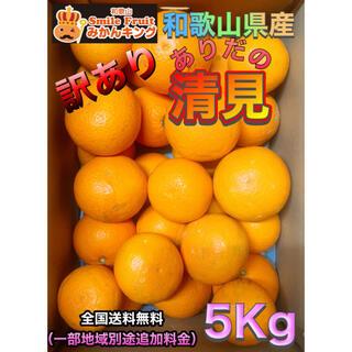 和歌山県産 訳あり ありだの清見 オレンジ 5Kg 送料込み みかんキング(フルーツ)