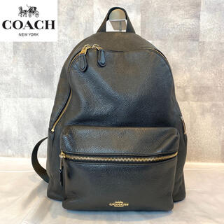 COACH - 【COACH】コーチ リュック バックパック F38288 レザー 黒 A4
