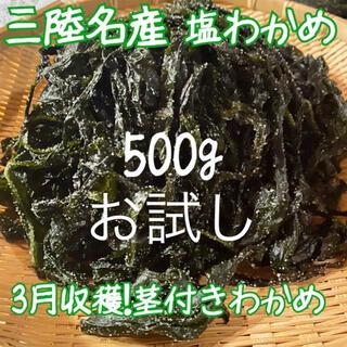岩手県産 塩蔵わかめ わかめ 産地直送! 早取り 美味しい!(野菜)