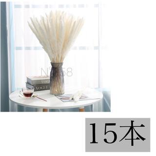 ドライフラワー インテリア パンパスグラス15本 ハンドメイドスワッグ花材 北欧(ドライフラワー)