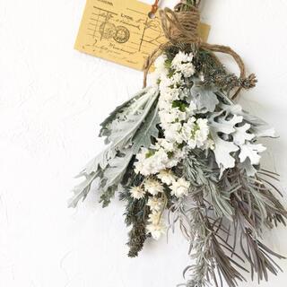 香り立つ無農薬 フレッシュダースティー ホワイトラベンダースワッグ(ドライフラワー)