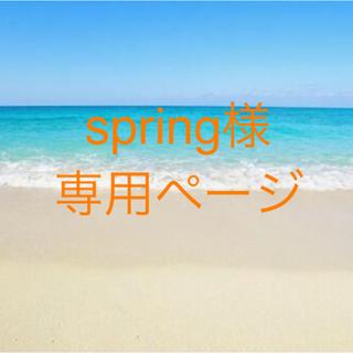 spring様 専用ページ(キーホルダー)