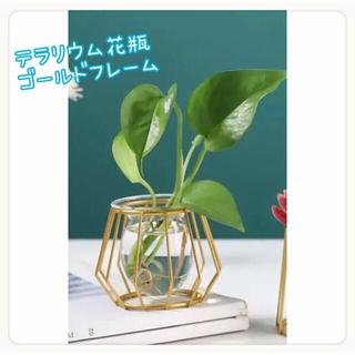 ♡テラリウム 花瓶 フラワーベース 北欧 ♡(花瓶)