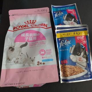 ロイヤルカナン(ROYAL CANIN)の新品未開封 ロイヤルカナン 授乳期 子猫用(ペットフード)