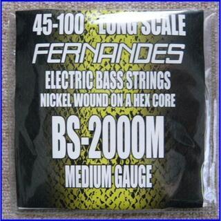 FERNANDES BS-2000M ベース弦 ロング 45-100x1 (弦)