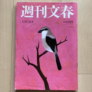 ブンゲイシュンジュウ(文藝春秋)の週刊文春 2017年 12/7号(ニュース/総合)