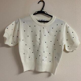 ダズリン(dazzlin)のdazzlin*ニット*新品(Tシャツ/カットソー(半袖/袖なし))