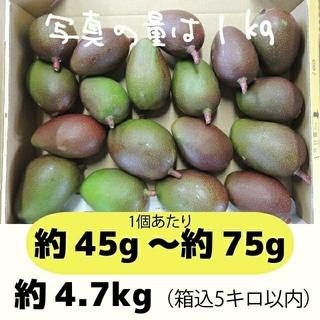 [黄5-1]約4.7キロ グリーンマンゴー 青マンゴー 加工用 マンゴー(フルーツ)