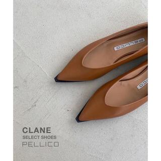 PELLICO - CLANE select/PELLICO フラットパンプスANIMA