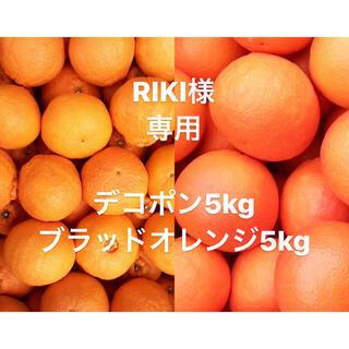 RIKI様 専用 ブラッドオレンジ中玉前後5kg デコポン大中5kg(フルーツ)