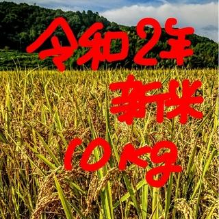 令和2年産新米 低農薬玄米10キロ 山田錦の里より農家直送。。(米/穀物)